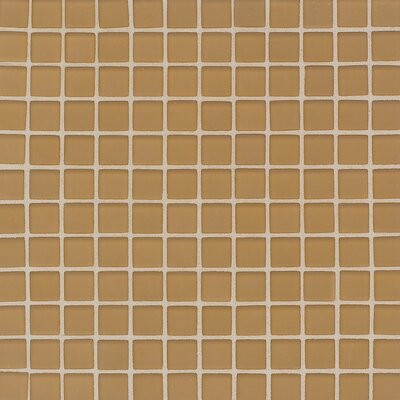 "Daltile Maracas Glass 1"" x 1"" Frosted Mosaic Tile in Evening Sun"