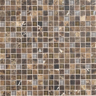 """Daltile Stone Radiance 5/8"""" x 5/8"""" Mosaic Tile Blend in Wisteria / Tortoise"""