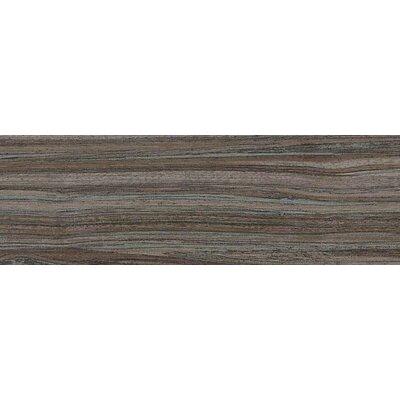 "Daltile Veranda Tones 6-1/2"" x 20"" Field Tile in Bamboo Forest"