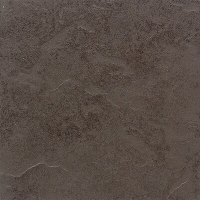 "Daltile Cliff Pointe 12"" x 12"" Porcelain Field Tile in Earth"