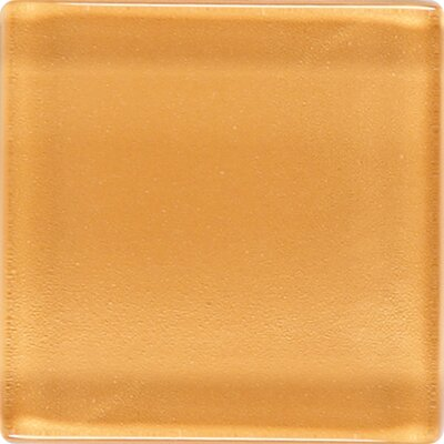 "Daltile Isis 1"" x 1"" Glass Mosaic Tile in Marigold"