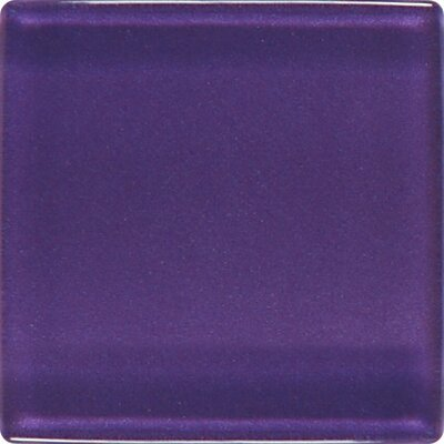 "Daltile Isis 12"" x 12"" Glass Mosaic Tile in Mystical Grape"