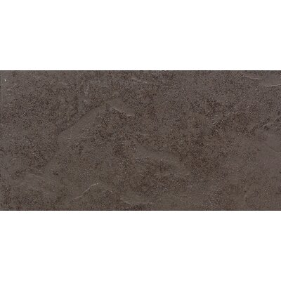 "Daltile Cliff Pointe 6"" x 12"" Porcelain Field Tile in Earth"