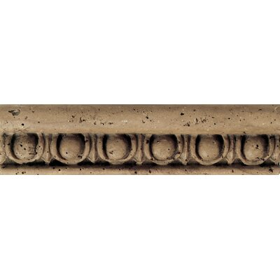 "Daltile Fashion Accents 8"" x 2"" Romanesque Decorative Listello in Jacquard Noce"