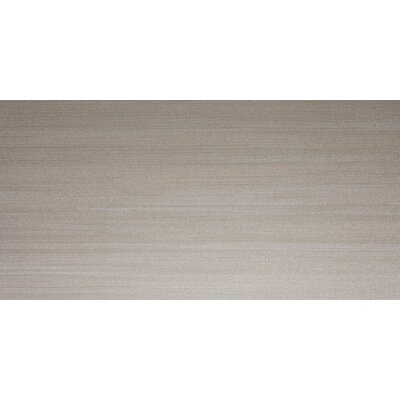 "Daltile Spark 12"" x 24"" Unpolished Field Tile in Smoky Glimmer"