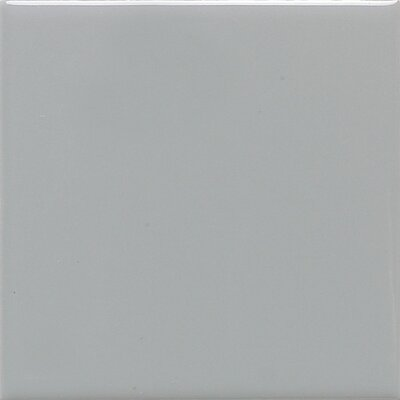 "Daltile Modern Dimensions 4"" x 2"" Plain Ceramic Mosaic Tile in Matte Desert Gray"