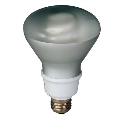 Royal Pacific 16W Self-Ballasted CFL (Pack of 12)