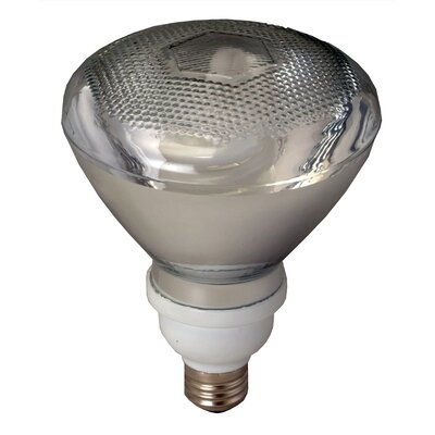 Royal Pacific 23W Self-Ballasted CFL (Pack of 12)