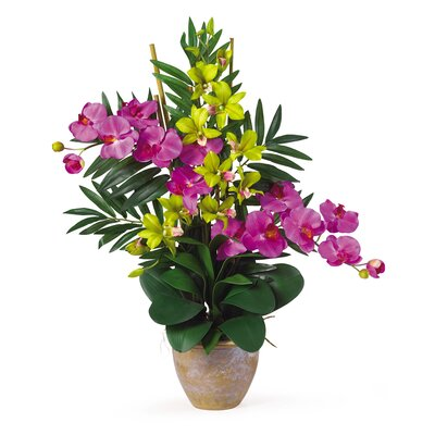 Double Phalaenopsis and Dendrobium Silk Orchid Arrangement in Orchid and Green