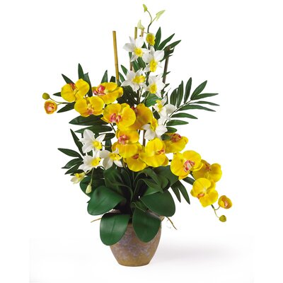 Double Phalaenopsis and Dendrobium Silk Orchid Arrangement in Yellow and Cream