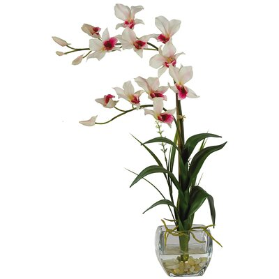 Nearly Natural Silk Dendobrium Arrangement in White with Glass Vase