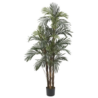 Silk Robellini Palm Tree in Green