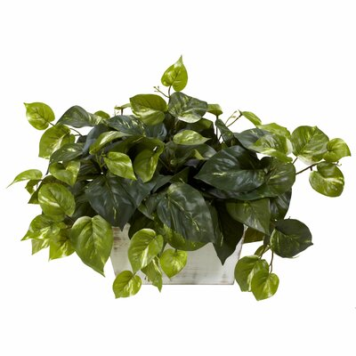 Nearly Natural Pothos Desk Top Plant in Planter