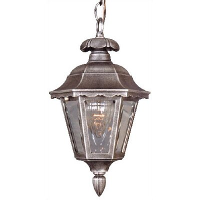 Special Lite Products Chesapeake Medium Chain 1 Light Pendant