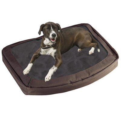 Bergan Pet Products The Dog's Bed