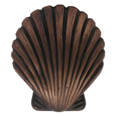 Whitehaus Collection Cabinetry Hardware Solid Brass Seashell Shaped Knob
