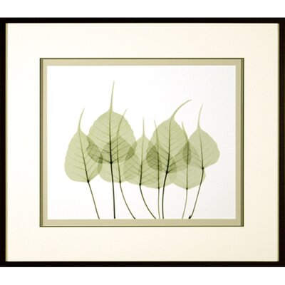 <strong>Phoenix Galleries</strong> Woodlands 1 Framed Print