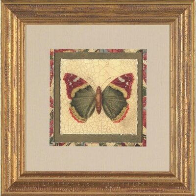 Phoenix Galleries Crackled Butterfly II Framed Print