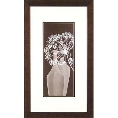 Phoenix Galleries Twigs 2 Framed Print