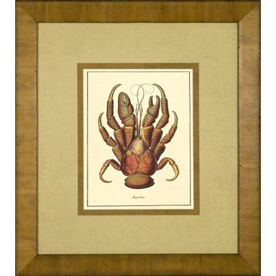 Phoenix Galleries Rust Crab Framed Print