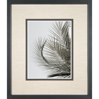 Phoenix Galleries Palm Leaf 3 Framed Print