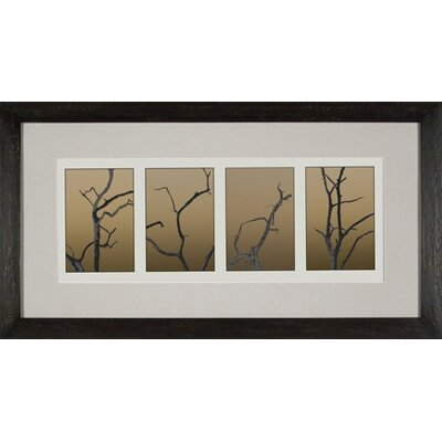 Phoenix Galleries Shadow Trees 1 Framed Print