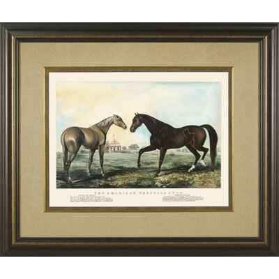 Trotting Stud 2 Framed Print