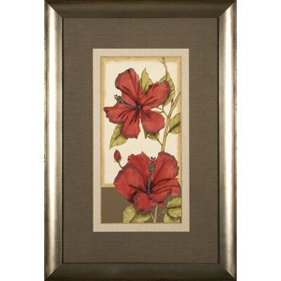 Phoenix Galleries Hibiscus 4 Framed Print