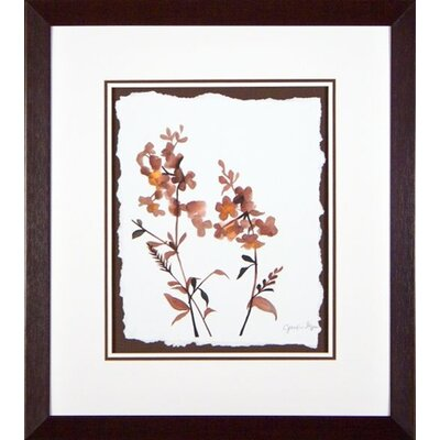 Phoenix Galleries Wildflowers 4 Framed Print