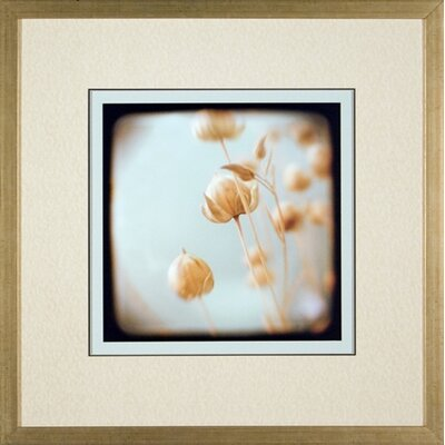 Phoenix Galleries Sea Foam Framed Print