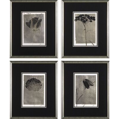 Phoenix Galleries Silver Stem Framed Prints