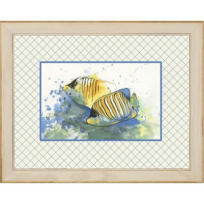 Phoenix Galleries Angel Fish Framed Prints