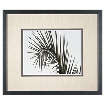 <strong>Phoenix Galleries</strong> Palm Leaf 2 Framed Print