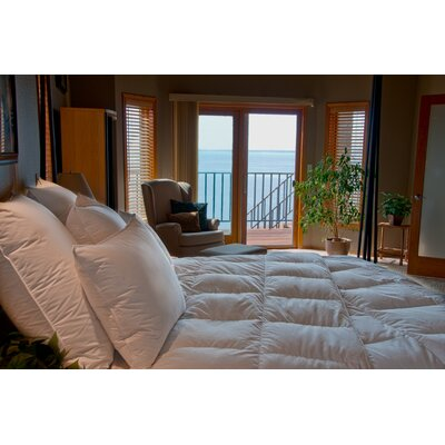Ogallala Comfort Company Monarch 800 Hypo-Blend Artic Down Comforter