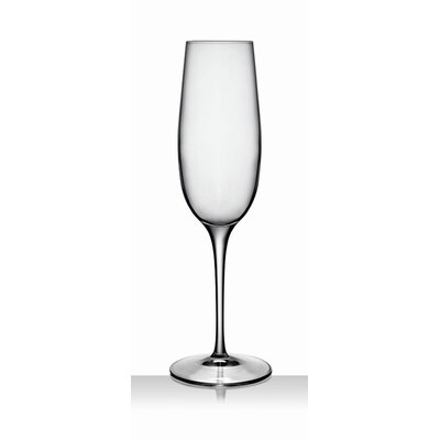 Luigi Bormioli Palace Champagne Flute Glass (Set of 6)