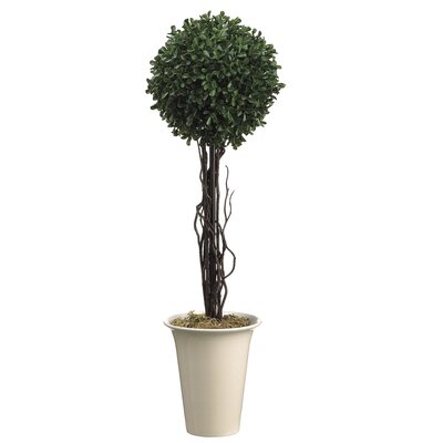 "Tori Home 24"" Boxwood Topiary in Ceramic Pot"