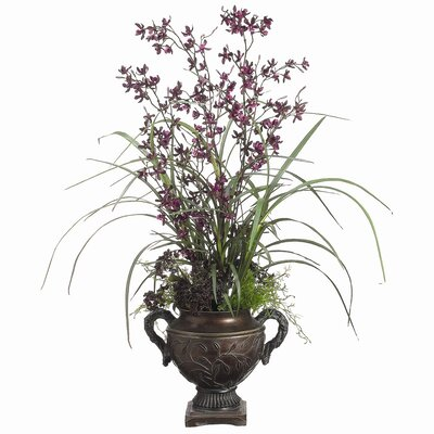 Tori Home Mini Cymbidium Orchid, Berry Mixed in Urn