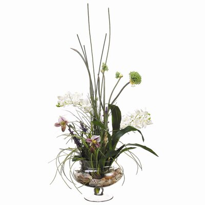 Tori Home Phalaenopsis, Lady's Slipper in Glass Vase