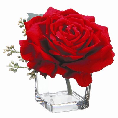 Velvet Large Rose in Glass Vase