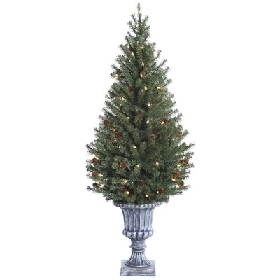 Tori Home 4' Green Noble Pine Artificial Christmas Tree with Cone 70 Clear Lights with Urn