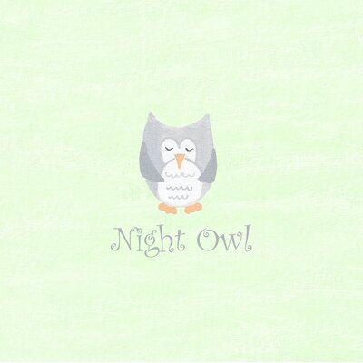 The Little Acorn Night Owl Canvas Wall Art