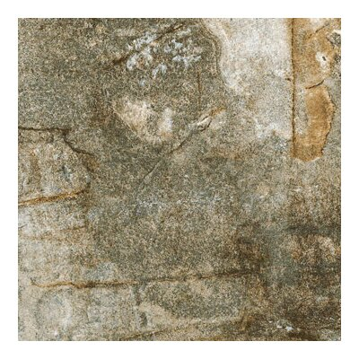 Vesale Stone 20