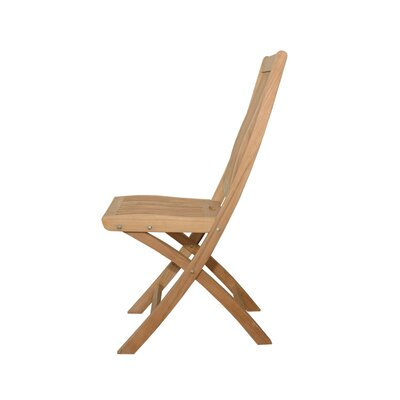 Anderson Teak Tropico Folding Dining Chair (Set of 2)