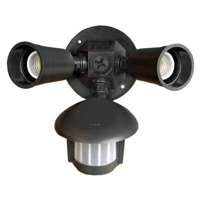 Morris Products Motion Activated Twin Par Light