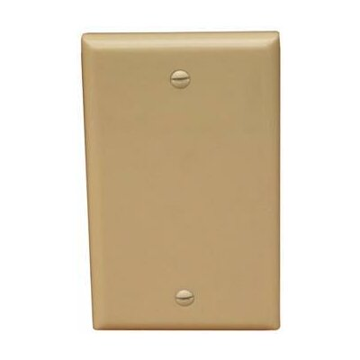Morris Products 1 Gang Blank Lexan Wall Plates in Ivory