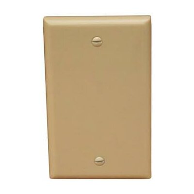 Morris Products 1 Gang Midsize Blank Lexan Wall Plates in Ivory