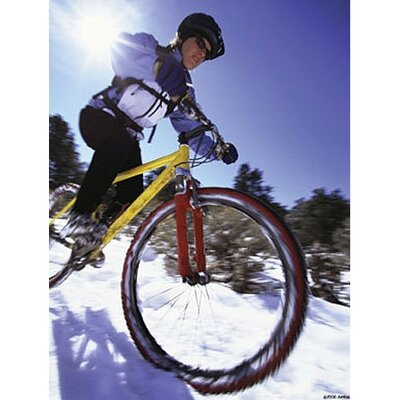 Art 4 Kids Snow Biking Wall Art