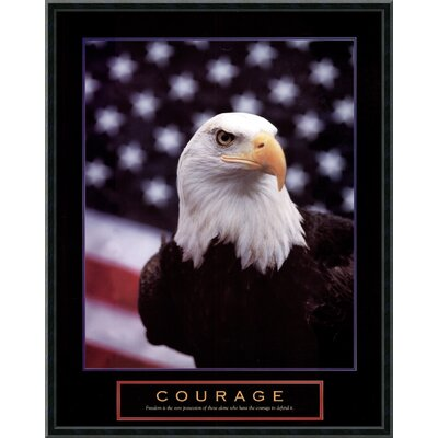 Courage - Eagle and Flag Framed Print Art - 29.02