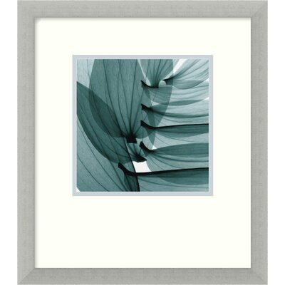 Lily Leaves by Steven N. Meyers, Framed Print Art - 16.68