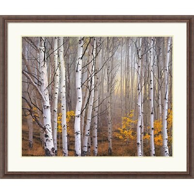 Aspen in Fog by Charles Cramer Framed Fine Art Print - 32.30